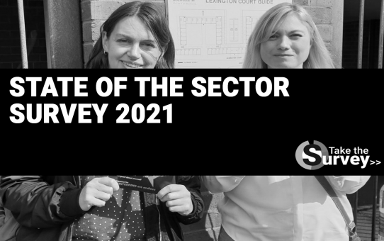 State of the Sector Survey 2021 image